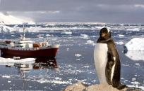 Classic Fly Cruise, Antarctica