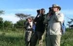Wandel safari Tanzania 2