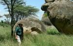 Wandel safari Tanzania 3