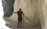 Wandel safari Tanzania 6